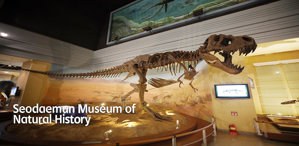 Seodaemun Museum of Natural History